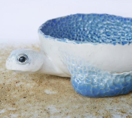 Żółw patera 2