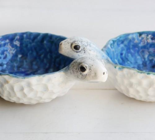 Żółw miseczka 2