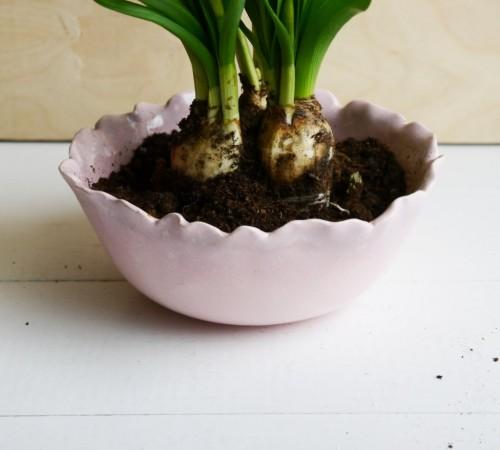 Miska, doniczka kwiat 2